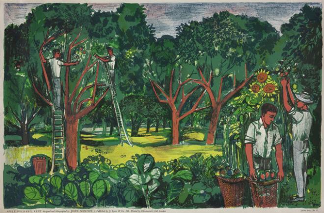 Apple-Orchard-Kent-1951-by-John-Minton