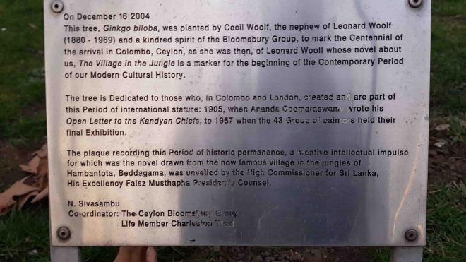 Woolf plaque copy